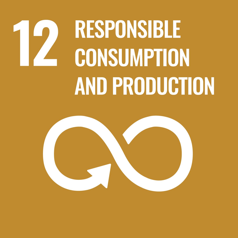 SDG Icons 2019_WEB_E-WEB-Goal-12
