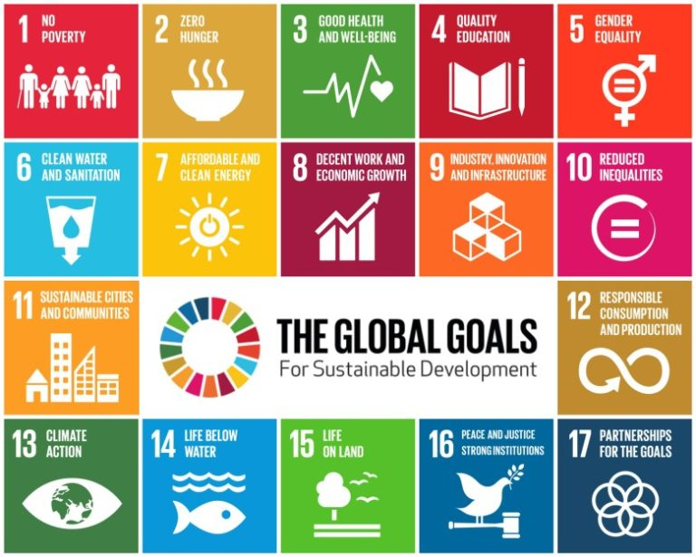 MEET 17 COMPANIES HELPING TO MEET THE 17 UN SUSTAINABLE DEVELOPMENT GOALS
